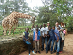 Visit to Giraffe Centre - Nairobi, December